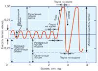 Рис. 1. Стадии дыхательного цикла