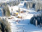 Гармиш-Партенкирхен и IV зимние Олимпийские игры